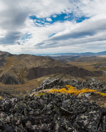 black rocks with yellow moss with road going towards the horizon, yukon landscape scenery